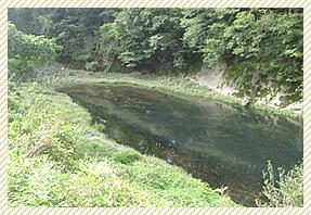 白川砂とはの改良写真